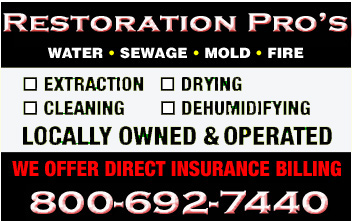 water damage professional cleanup