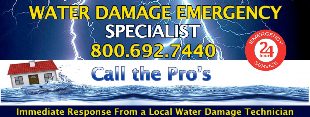 Water Damage Cleanup Pros